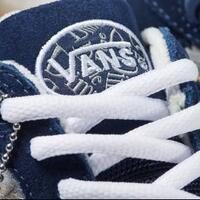 dime-dan-vans-memperkenalkan-sepatu-skate-baru-wayvee