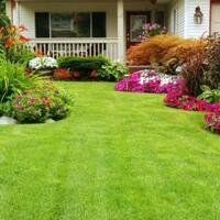 begini-enaknya-ada-rumput-di-halaman-rumah