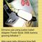 apple-adaptor-charger-macbook-ipad-magsafe-magsafe2-45-60-85-10w-12w-garansi-1thn-ori