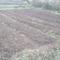 tanah-kavling-cimahi