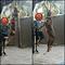 pitbull-female-prospek-sporting