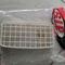 jual-grill-head-lamp-bespa-excel-original-px-series