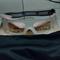goggles-kacamata-untuk-aktifitas-olahraga-berlensa-minus-cougar-sport-eyewear