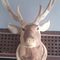 spesialis-patung-rusa-dan-kepala-rusa-jepara