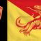 jika-logo-provinsi-di-indonesia-dibuat-jadi-bendera-sederhana