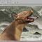 all-photoshop-tutorial--plug-ins--brush---part2
