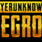 ot-playerunkowns-battleground--fight-for-chicken-dinner
