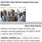 waring-dan-bendera-bambu-disorot-media-asing-kritikan-netizen-di-luar-negeri