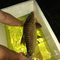 catfish---part-1