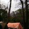 share-pengalaman-beach-camping-di-destinasi-wisata-terbaik-jawa-timur