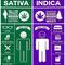 30-jenis-narkoba-beserta-efek-dan-dampaknya-bagi-kesehatan