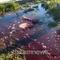 banjir-darah-setelah-gempa-menggegerkan-warga-turki-benarkah-fenomena-biasa