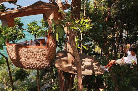 Restoran Tree Pod Dining, Pelayannya Pakai Flying Fox Saat Antar Hidangan