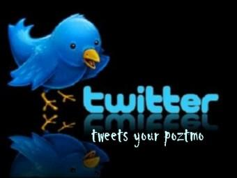 jual 30 akun twiter gan