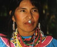 [SOSBUD] 12 Suku Hutan Tropis Yang Diambang Kepunahan Part 2