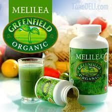 Makanan Organik Melilea