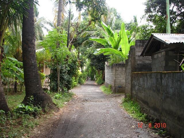 Tanah di Bondalem, Singaraja - BALI