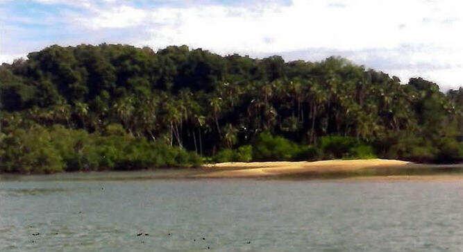 Ada 5 Pulau RI Akan Dijual
