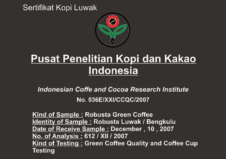 Kopi Luwak Sumatra , 100% authentic