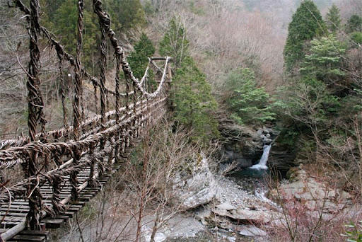 Yuk Kita Lihat 3 Jembatan Hidup di Dunia (Mantap!!! salah satunya ada di Indonesia)