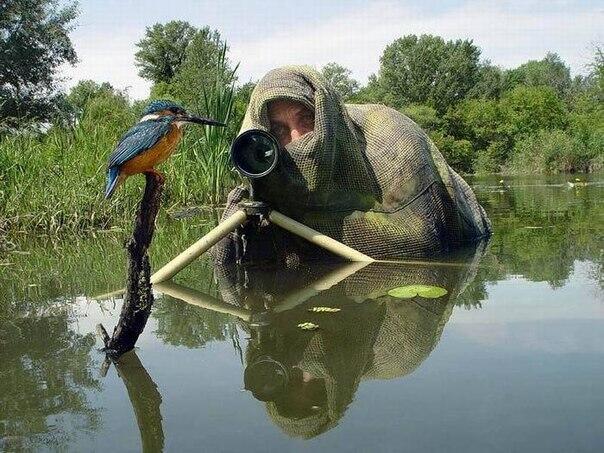 Kalau mau motret burung, ya.... nggak begini juga, kaleeee....