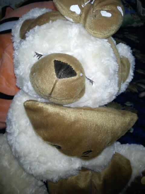 cari boneka beruang yang seperti ini    a76b711c23