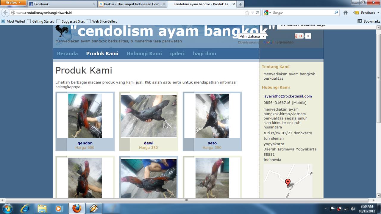 AYAM BANGKOK CENDOLISM SHOP ( YOGYAKARTA)