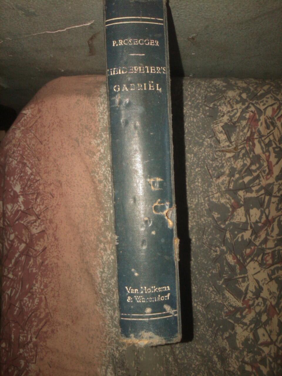 jual buku Heide Peterr Gabriel karya peterr rosseger