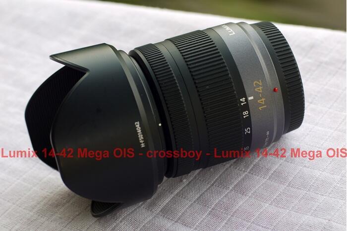 Lumix G Vario 14-42 Mega OIS Micro4/3, Seagull 50/2.8+Micro 4/3 adapter