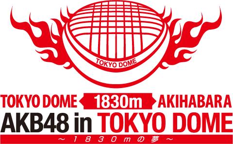 WTB BAJU JKT48/AKB48 TOKYODOME