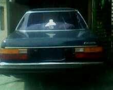 jual mobil honda 1983