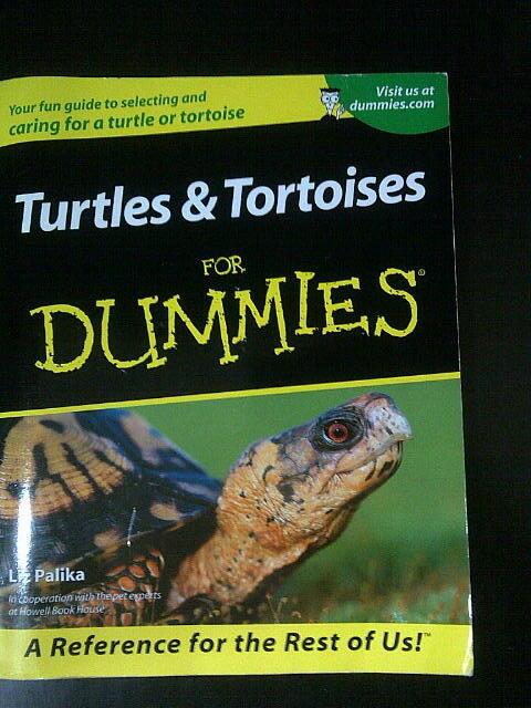 Buku Turtles & Tortoises For Dummies (Utk yg piara kura / tortoise / turtle)