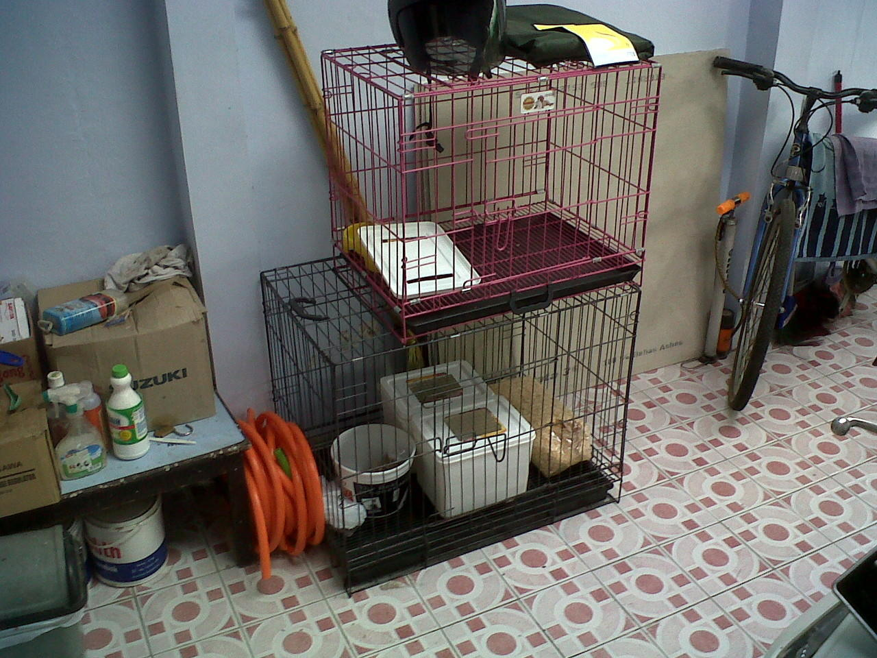 jual kandang kucing second