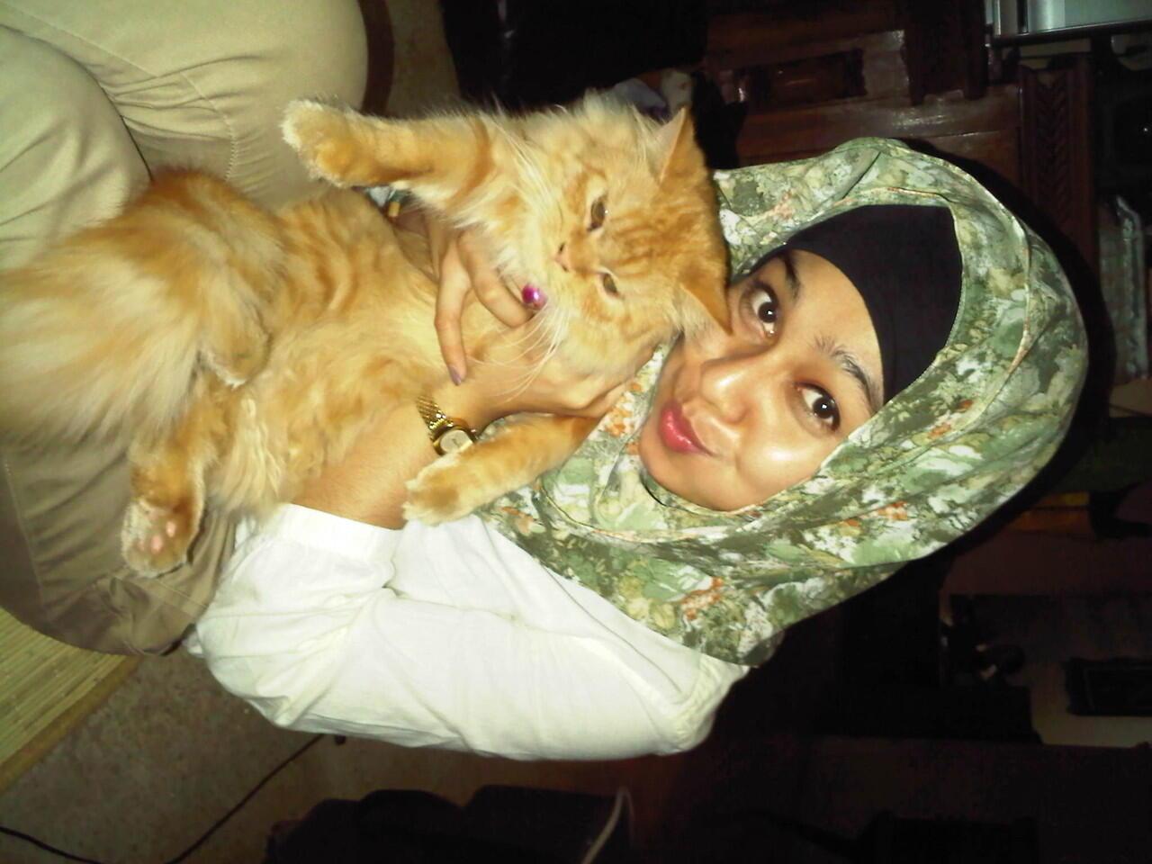 Cari kucing jantan selain ras kampung surabaya