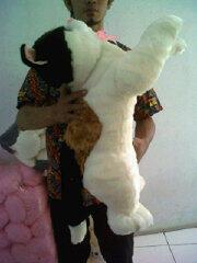 Boneka Kucing Jumbo