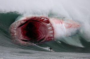 850+ Gambar Ikan Hiu Megalodon Gratis Terbaik