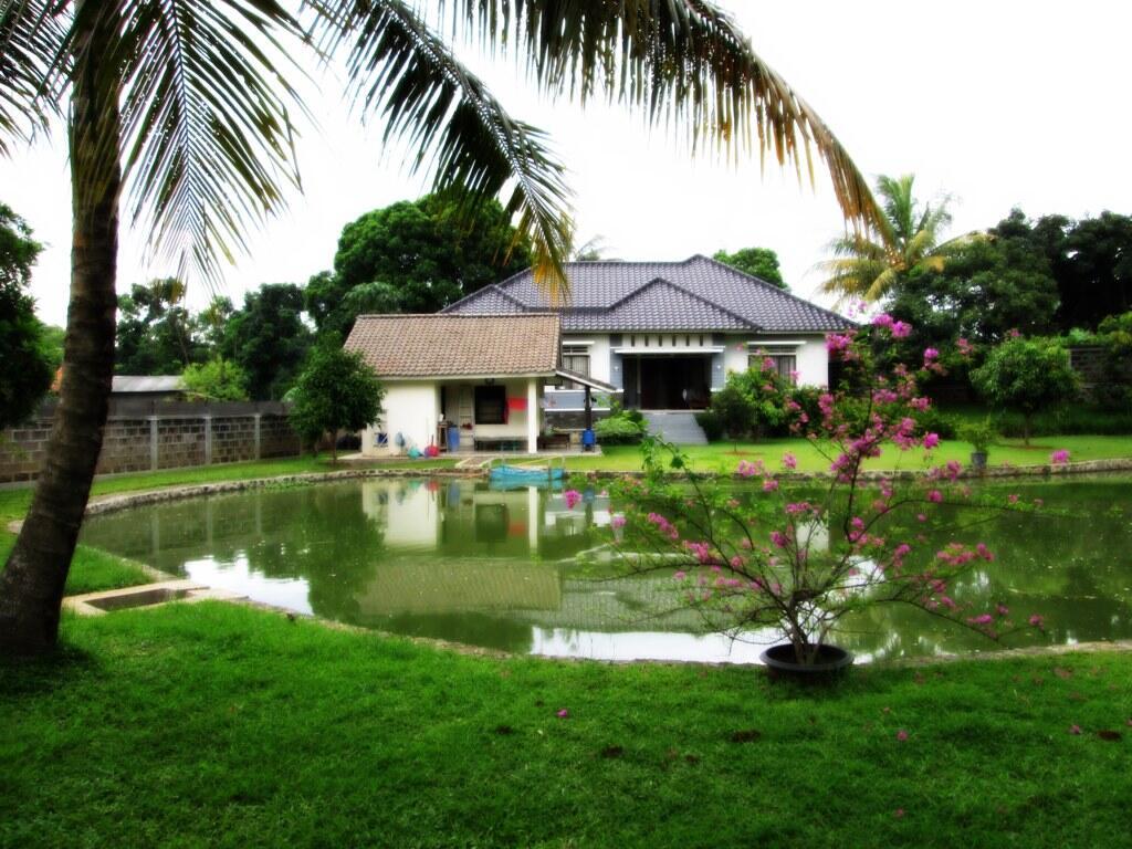 Terjual rumah halaman luas cibinong kaskus - Disegna il tuo giardino ...