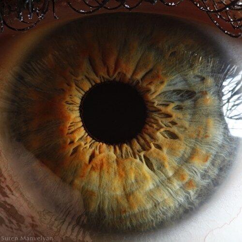 Melihat Mata Dari Jarak Sangat Dekat