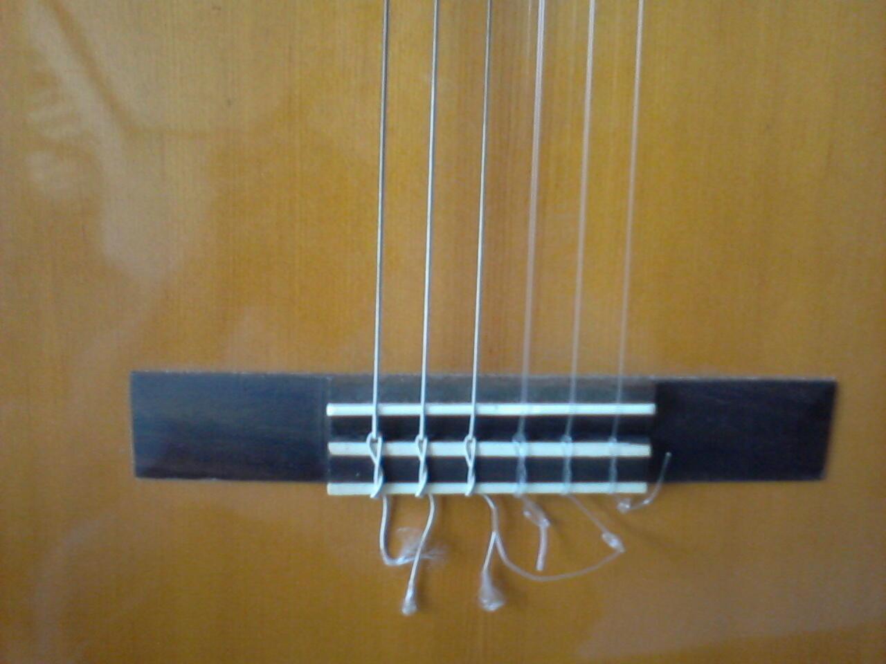 jual gitar akustik yamaha c40