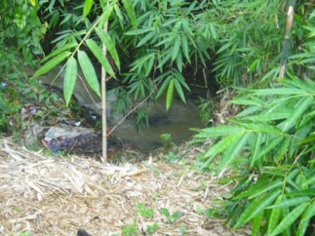 Tanah+Kolam+Bangunan di Cicadas Bogor [Dijamin Kaga Nyesel Abis Liat gan !!!! ]