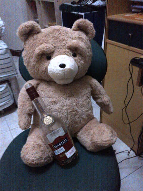 TED TED TED THUNDER BUDDY FOR SALE!SURABAYA