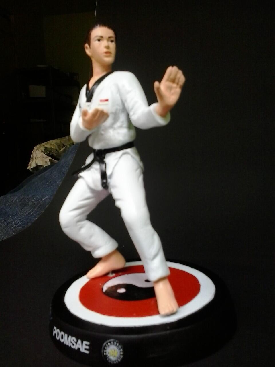 Cool Taekwondo Accessories