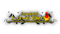 [Sweet Love Bird]Dijual Pakan Love Bird dan Vitamin Love Bird Import Versele-Laga