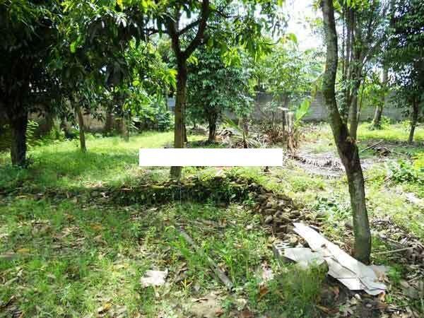 Rumah+Tanah di Ngeksigondo Kotagede