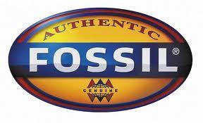 FOSSIL - ORIGINAL