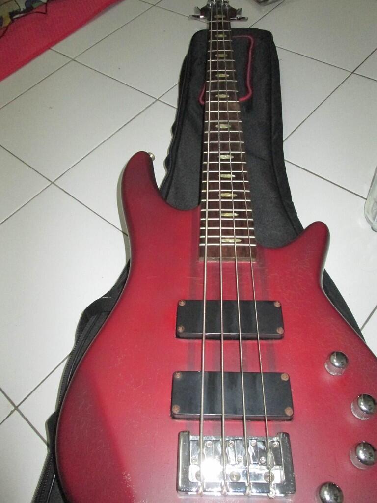 Bass Ibanez sdgr
