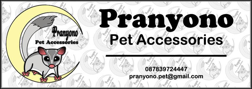 PPA-Collar/Kalung dan harnes Kucing,musang,kelinci,anjing kecil.