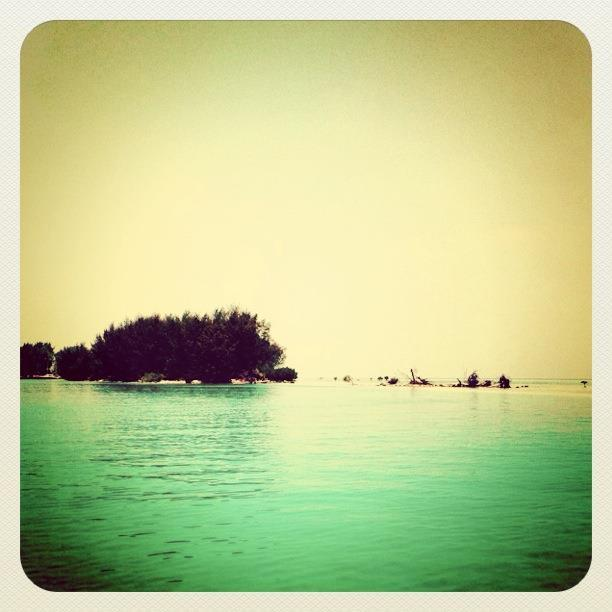 Pandangan Mata Saya (PMS) : Pulau Karang Bongkok, Kepulauan Seribu