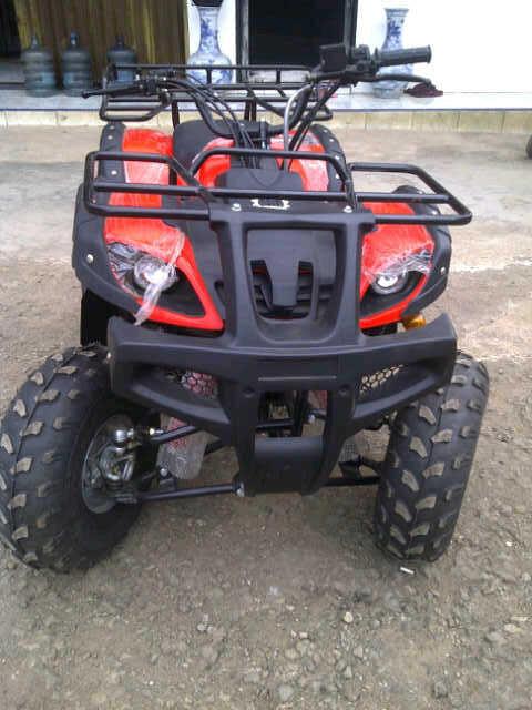 ATV DAN MINI ATV