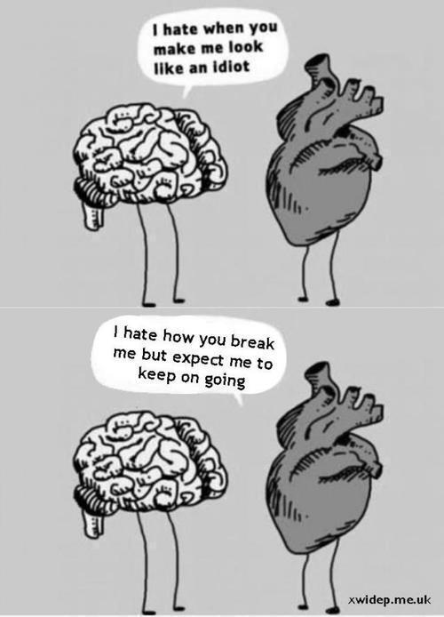 """Apa """"Hati"""" yang Sebenarnya, Otak atau Jantung?????"""